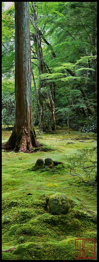 Sanzen-In  SPRING GARDENS IN KYOTO #kyoto #Japan