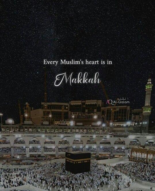 آيات القرآن On Twitter و ل ل