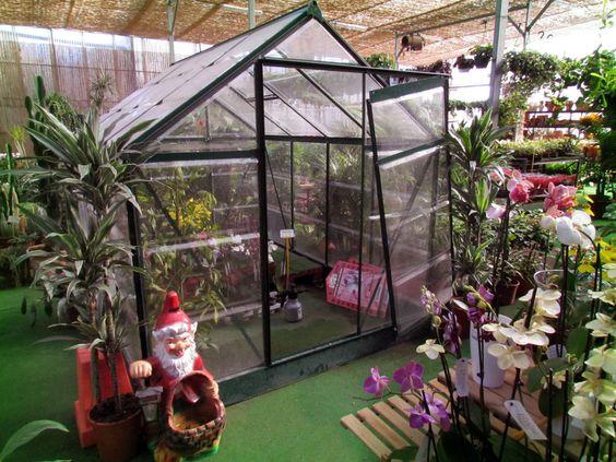 Invernadero de orquideas