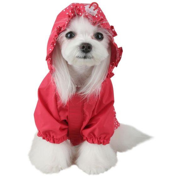 Chubasquero para perro storm rojo kuka s world ropa y for Diseno de ropa