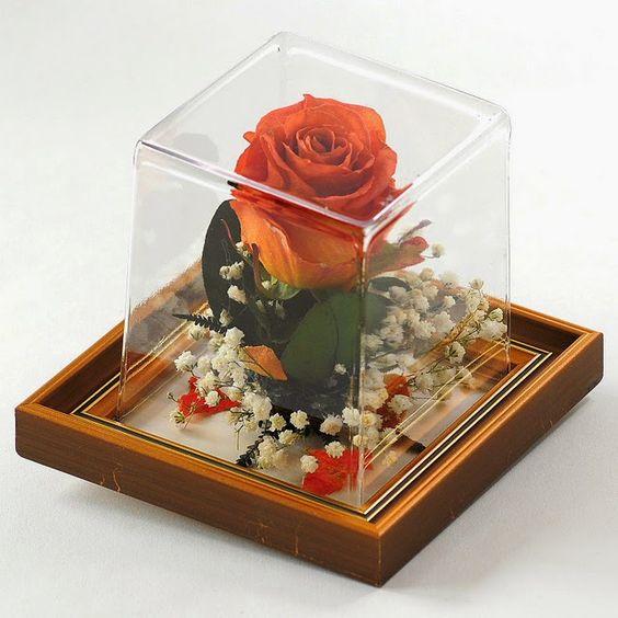 Acasa la Nevasta: Cum se pastrează florile pentru mult timp