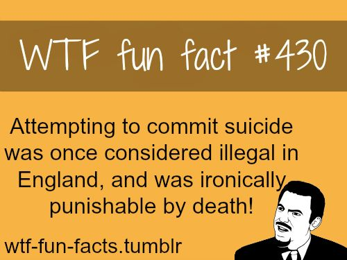 WTFfunfacts Funny Weird Facts Awesome Pics Pinterest - The most bizarre laws of the us get broken in this ironic photo series