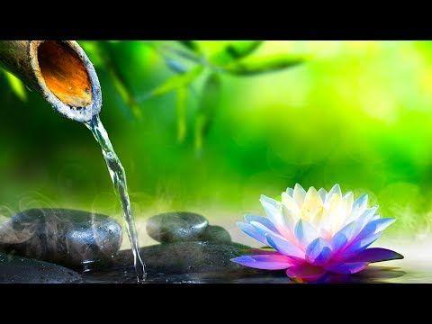 Relaxing Music Meditation Music Sleep Music Reiki Healing Music Yoga Relax Zen Music Meditation Music Meditation Calming Music