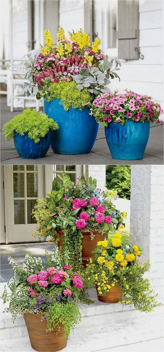 Colorful Flower Gardening In Pots Made Easy With 38 Best Designer Plant List For Each Container An Flower Pot Garden Container Flowers Beautiful Flowers Garden