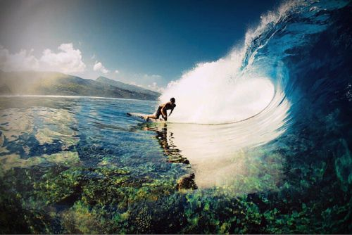 Can I just live on that wave forever please?