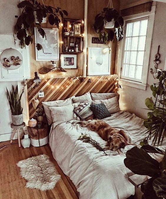 Surprisingly Cute House Decorations