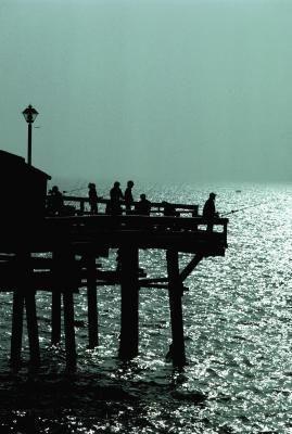 24 hour pier fishing in southern california kid for Dana point pier fishing