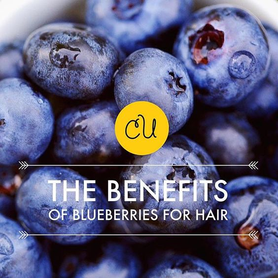 Blue is the New Black! Find out how #blueberries can accelerate hair growth, slow down hair aging and tint our hair for a pop of color. Visi