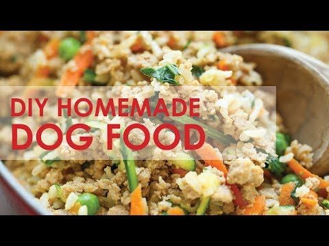 Diy Homemade Dog Food Youtube Dog Food Recipes Dog Treat