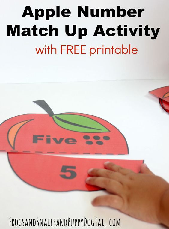 Apple Number Match Up Activity Numbers, Activities and