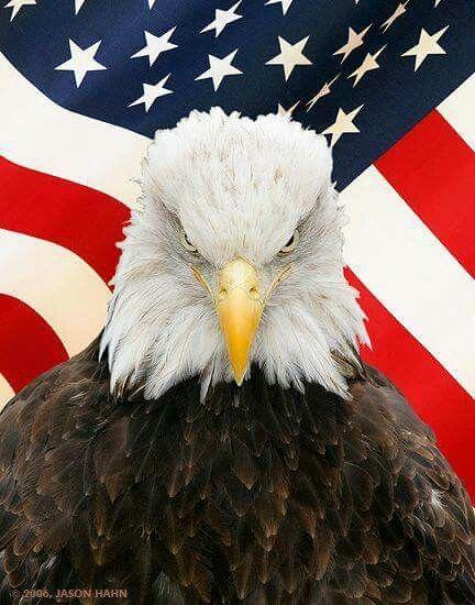 God bless the U S A.