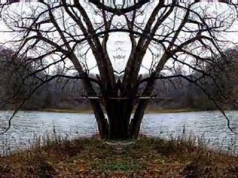 Brian Eno - This - Time Lapse - Four Seasons
