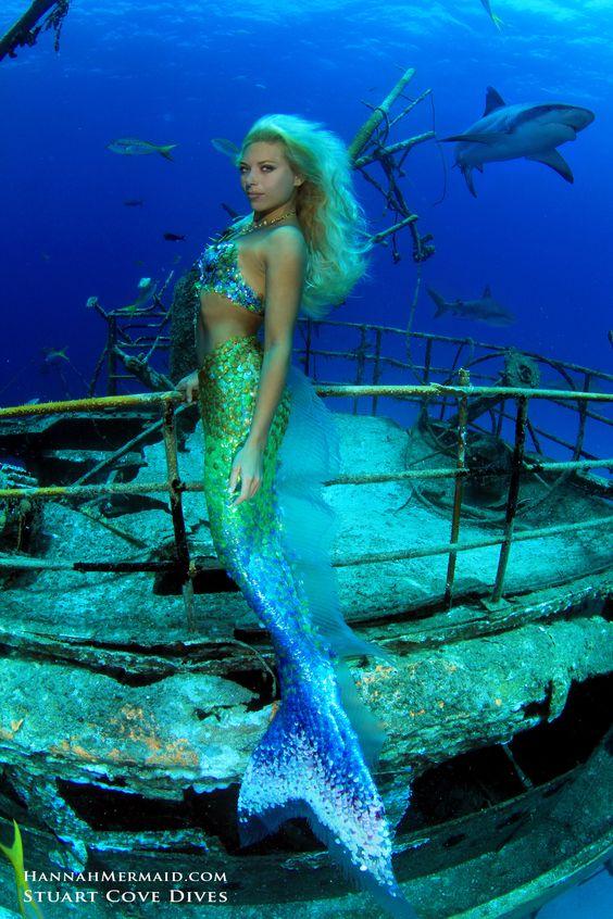 Little Mermaid Erg Mooie 18370