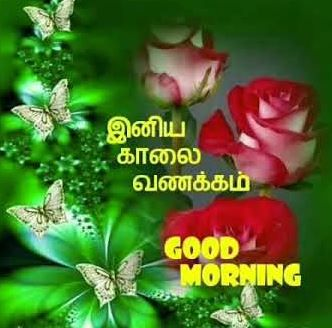 Good Morning Beautiful Message In Tamil Good Morning Images Morning Images Good Morning Beautiful Pictures