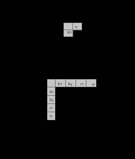 Dihybrid Cross Worksheet Answers New Punnett Square Worksheet Chessmuseum Template Library In 2020 Dihybrid Cross Worksheet Dihybrid Cross Worksheets