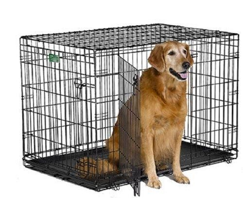 Midwest Icrate Double Door Crate With Divider For Pets 42 Inch Folding Dog Crate Wire Dog Crates Large Dog Crate