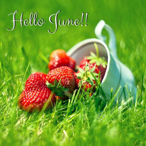 justbelieve2him:  Welcome, JUNE, and the warm, warm Sunshine!!  ♥: