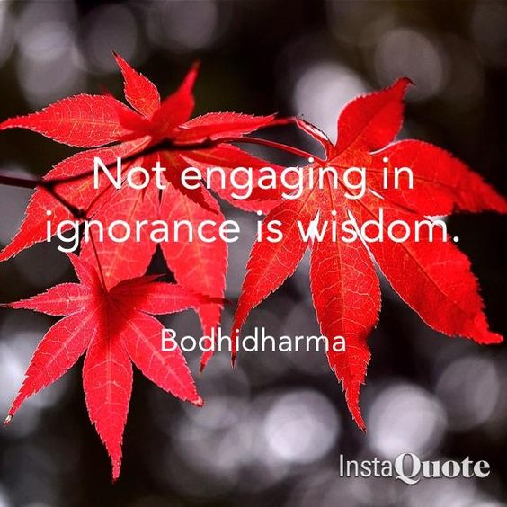 Ignorance can blind us to the truth! #quote #Bodhidharma #engaging #ignorance #wisdom #not #instaquote