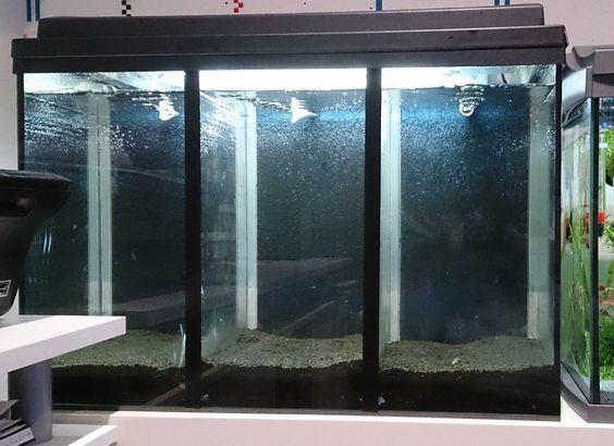 Mein drei geteiltes Aquarium Becken mit hamburger Mattenfilter und Lufthebern. Die Anleitung gibts auf:
