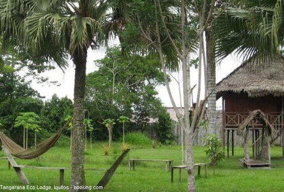 Disfrute de la selva amazónica en Tangarana Eco Lodge.  Para aquellas personas que buscan un turismo vivencial en medio de la exuberante selva amazónica, lo pueden encontrar en el albergue ecológico Tangarana, a media hora de la ciudad de Iquitos, en el departamento de Loreto.