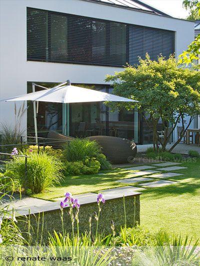 Felsenbirne - #Amelanchier als prägendes Element in diesem modernen Garten. Gartenplanung: Renate Waas Gartenarchitektin München #amelanchier #lamarckii
