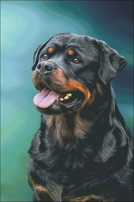 The 15 Most Realistic Rottweiler Paintings Petpress In 2020 Rottweiler Lovers Dog Breeds Dogs