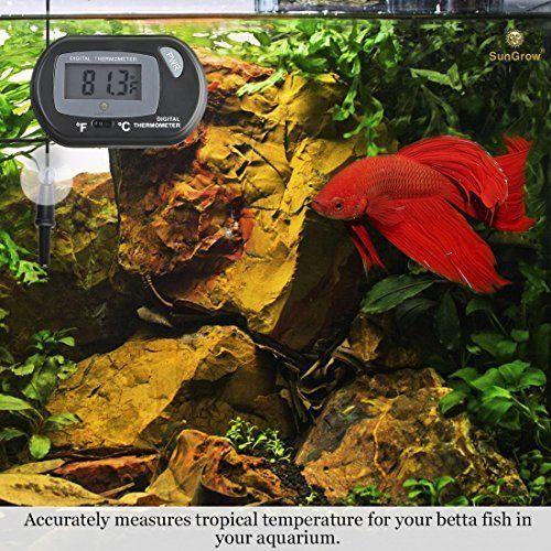 Aquarium Lcd Digital Thermometer Easy To Install Fish Tank Water Temperature Digital Thermometer Reptile Tank Fish Tank