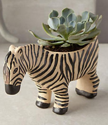 Chic Zebra Planter