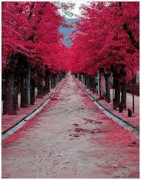 burgundy street, spain
