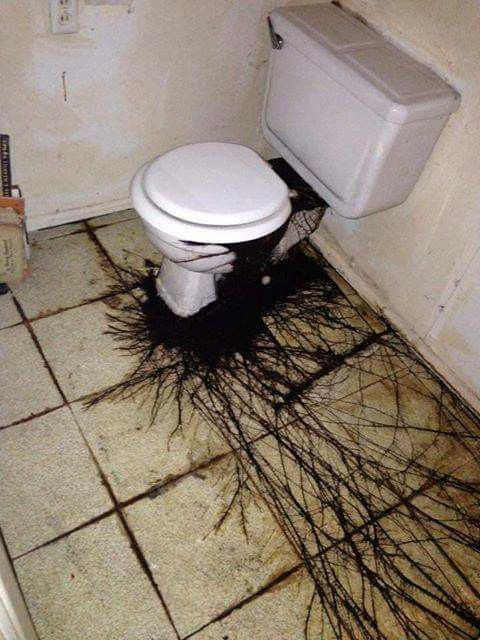 Weird Cursed Toilets With Menacing Auras 7