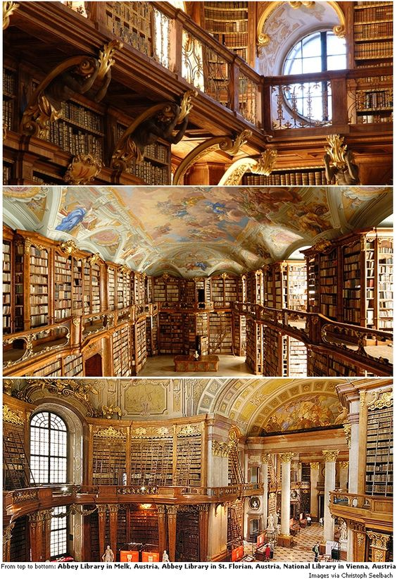 : Captivating Libraries to see :