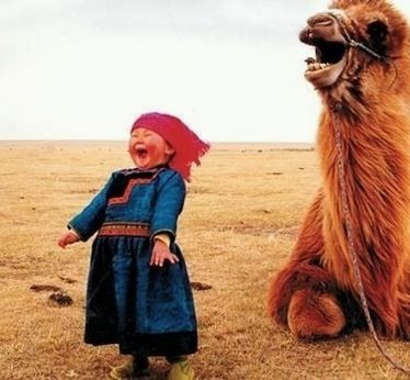 Turn that frown upside down. This just makes me laugh...look at it again ......and laugh              found on Huffingtonpost.com
