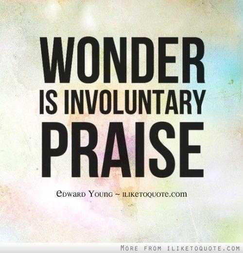Wonder is involuntary praise.