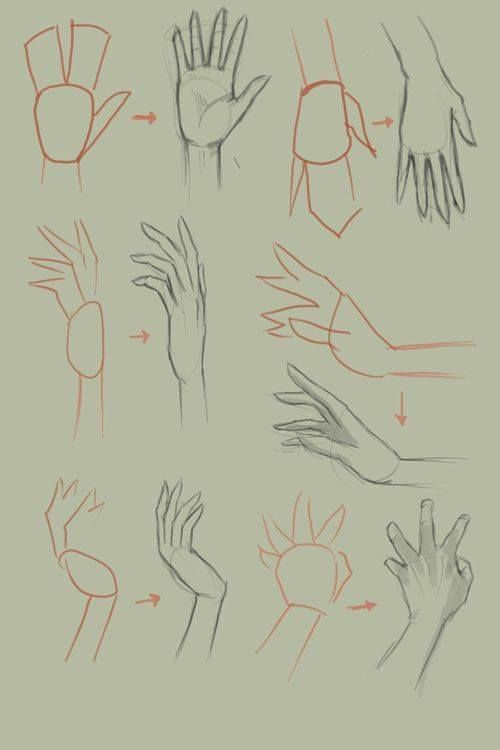 Tutorial To Learn To Draw Hand Proportions Online Drawing Lessons Drawing Anime Hands Drawing Tutorial Hands Basic Drawing