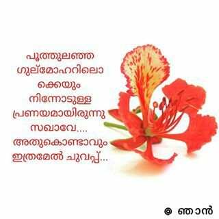 Malayalam Quotes Flower Quotes Communism Quote Emotional Quotes