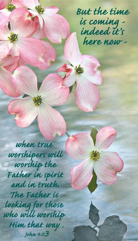 """But the time is coming -- indeed it's here now -- when true worshipers will worship the Father in spirit and in truth. The Father is looking for those who will worship Him that way."" - John 4:23"