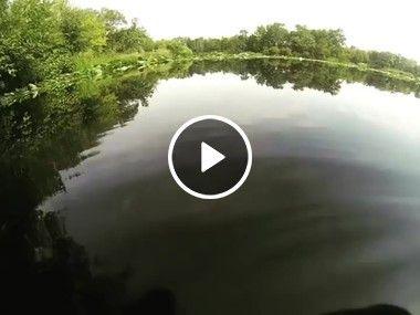 Não foi uma boa ideia ter entrar nesse rio, para se refrescar