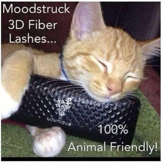 #younique is 100% #animal #friendly www.youniqueproducts.com/shelleyransome
