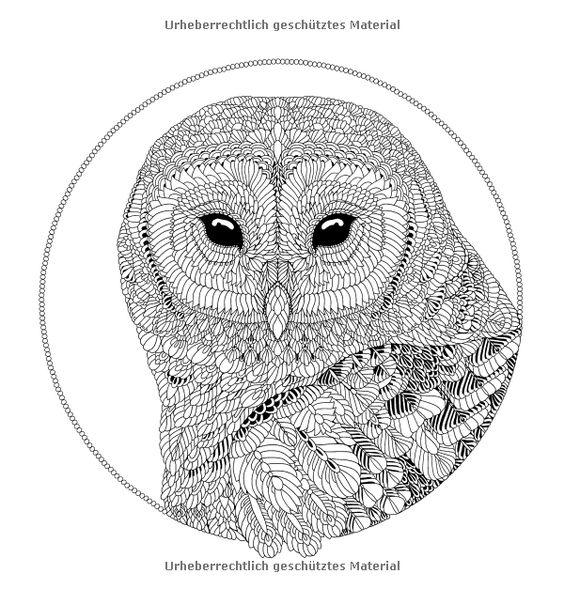 Nordische Wildnis: Ausmalen und entspannen: Amazon.co.uk: Claire Scully: 9783833852626: Books