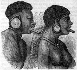 Mundo : Pesquisa genética revela que DNA de índios botocud...