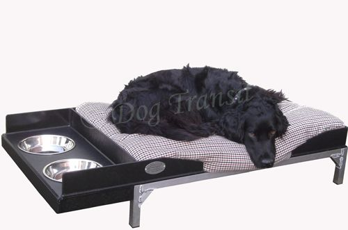 R-9 Deluxe Raised dog bed & feeding station combinedSmallFREE Uk Delivery (dbfs)