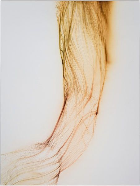 Wolfgang Tillmans photography   -  http://tillmans.co.uk/