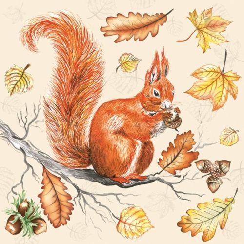 4 Single paper decoupage napkins Robin squirrel Xmas bird winter forest -x28