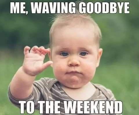 Pin By Sue Johns On Good Night Work Memes Waves Goodbye Make Me Laugh