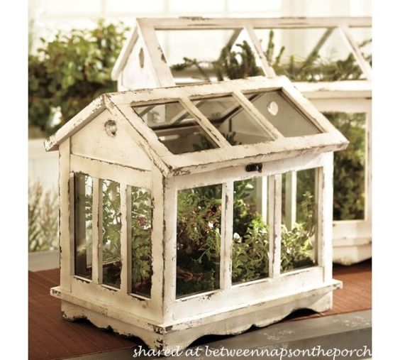 A Tabletop Greenhouse For Growing Herbs Cases Card