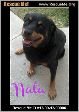 — California Rottweiler Rescue — ADOPTIONS —RescueMe.Org
