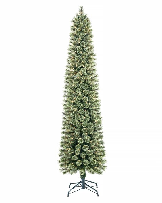 Cozy cashmere pencil tree trees shops and christmas trees for Trees for tight spaces