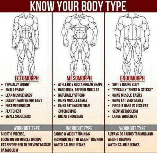Know your body type. Ectomorph, mesomorph or endomorph ...