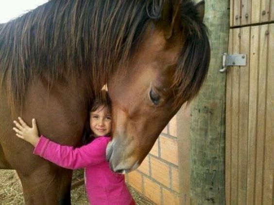 Kids and horses