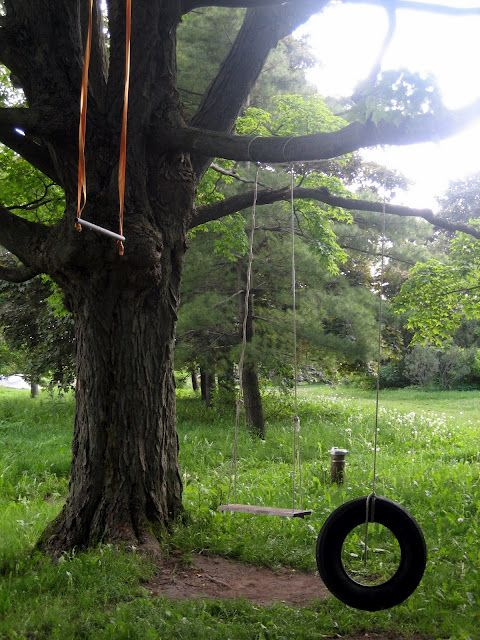 tree swings are the epitome of childhood - i need a big tree!!